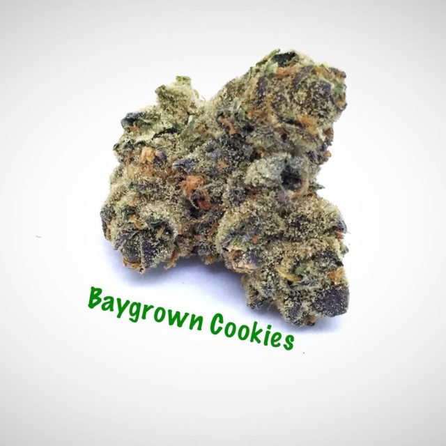 Trimming up some baygrown cookies today i502 i502producer i502processor marijuanahellip